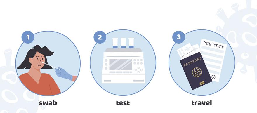 Steps PCR Test
